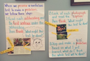 Anchor charts for lesson with 2nd graders on making informed predictions