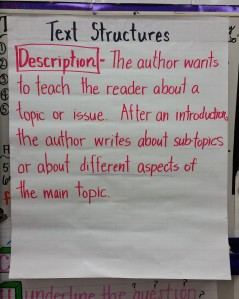 descriptive text structure