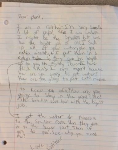 KV Letter to a plant
